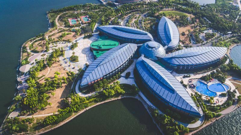 建精品民宿、打造创意厕所都有大额补贴?上海这个区域发布旅游体育支持政策