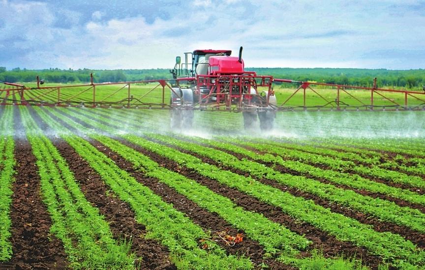 灭草追肥促大豆丰产增收