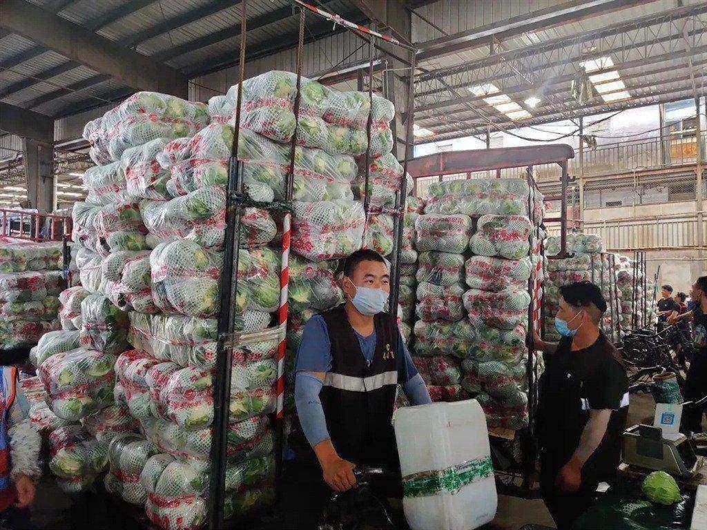 梅雨期间上海蔬菜生产供应如何?批发价下跌供应有保障