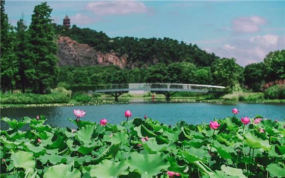 毕业季福利 辰山植物园请中高考生免费游园