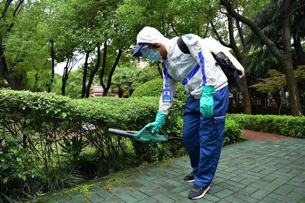 当心!今夏蚊子比去年多,超长梅雨期后,蚊子大军即将来袭