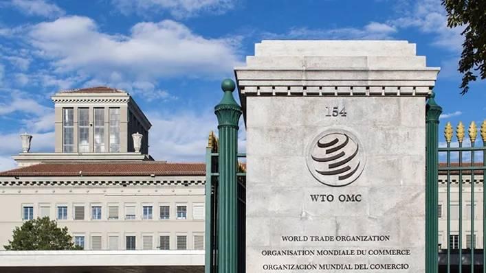 WTO新任总干事8人参与遴选非洲候选人呼声高