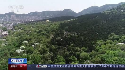 《【杏耀手机版登录】趵突泉、千佛山等票价五折 还有景区免票 这个暑期又多了心动去处》