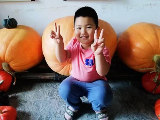 有图有真相,上海农民种出一只超过200公斤的大南瓜,市场价超过4000元