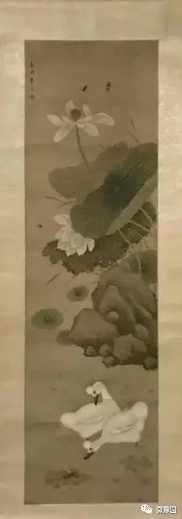 """上海豫园迎来到四只""""珍稀古禽"""",大家来看鸭!"""