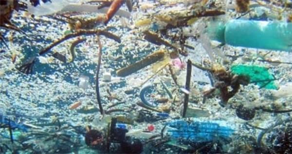 外媒揽要   9月5日晚报:日本将牵头制作海洋微塑料垃圾污染地图