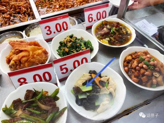 """上海大学推出""""小鸟胃""""专属餐,3元炒面、1元鲜肉蒸饺……"""