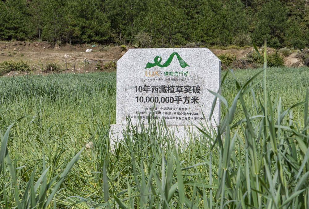 """""""力士·绿哈达行动""""在西藏种植的人工草场面积累计突破1000万平方米(9月13日摄)。新华社记者 孙非 摄"""