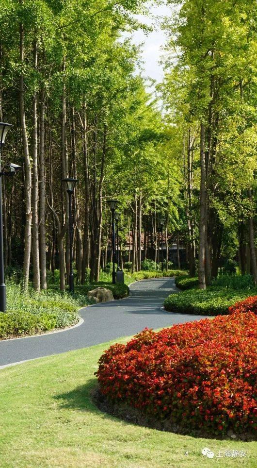 超90000㎡!上海彭浦四季公园今天开放