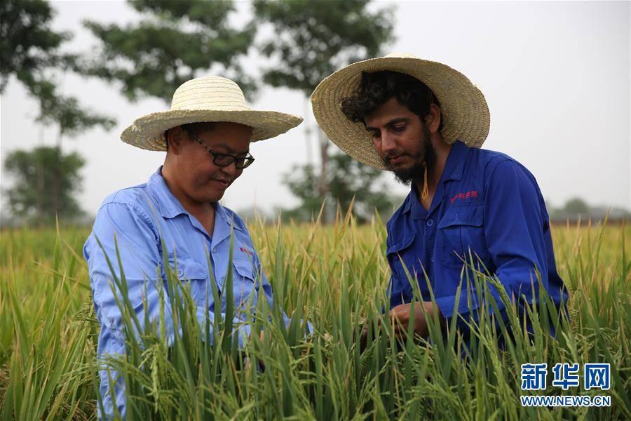 (國際)(7)世界糧食日:維護全球糧食安全 世界各國休戚與共
