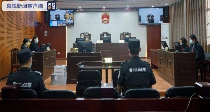 《【杏耀手机版登录】云南12人组织运送他人偷越国境案宣判:最高获刑11年》