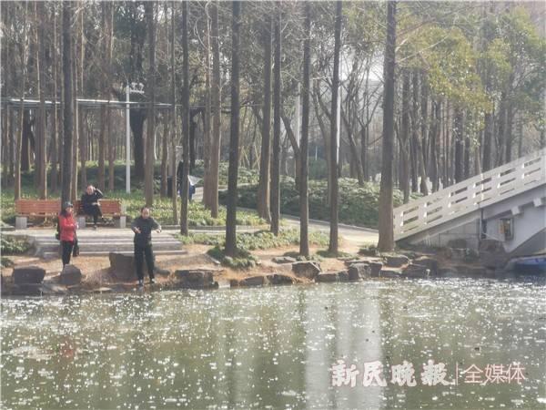 """大宁郁金香公园有小孩掉入结冰湖面?虚惊一场实是消防演习 但这些""""危险动作""""千万别做……"""
