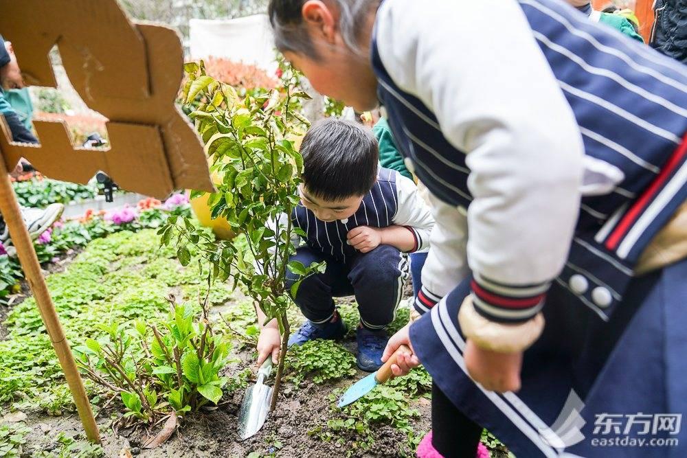 """埋下绿色环保的种子 这群幼儿园小朋友用实际行动保护""""树朋友"""""""