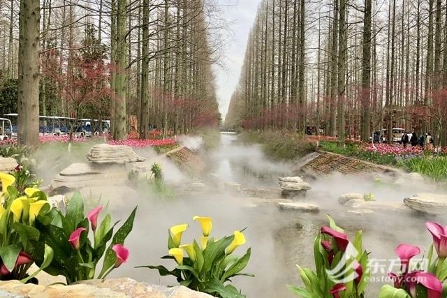 2021年崇明花朝节开幕 正式开门迎客的花博
