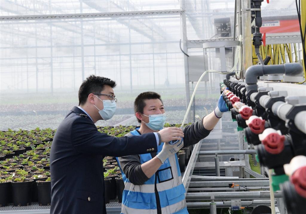 """乡村振兴也需要""""税动力"""" 上海落实农业产业企业税收优惠政策"""