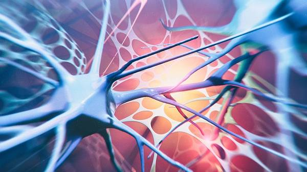 海外科技揽要5月25日丨庆应大学团队用iPS细胞找出延缓渐冻人症病情发展的药物