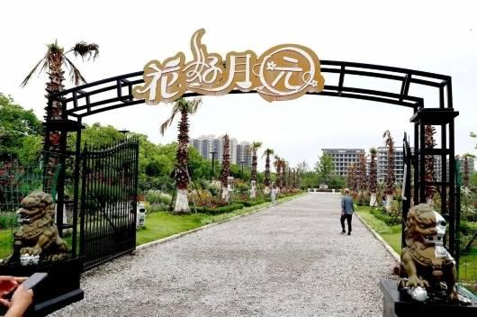 """上海一周区情:共享视觉盛宴花博园迎""""市民打卡团""""  科技节开幕科普场馆受热捧"""