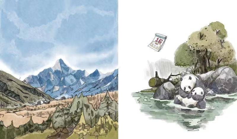 """从""""战斗力爆表""""到憨态可掬  大熊猫800万年演化科普绘本将亮相迪拜世博会"""