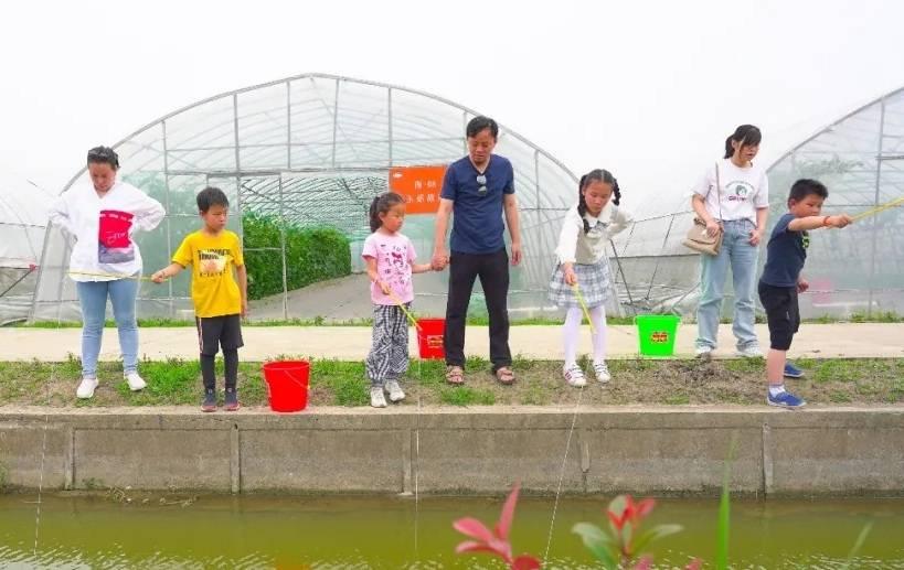 """""""新体验""""定义下的沪郊农场,靠什么留住游客?"""