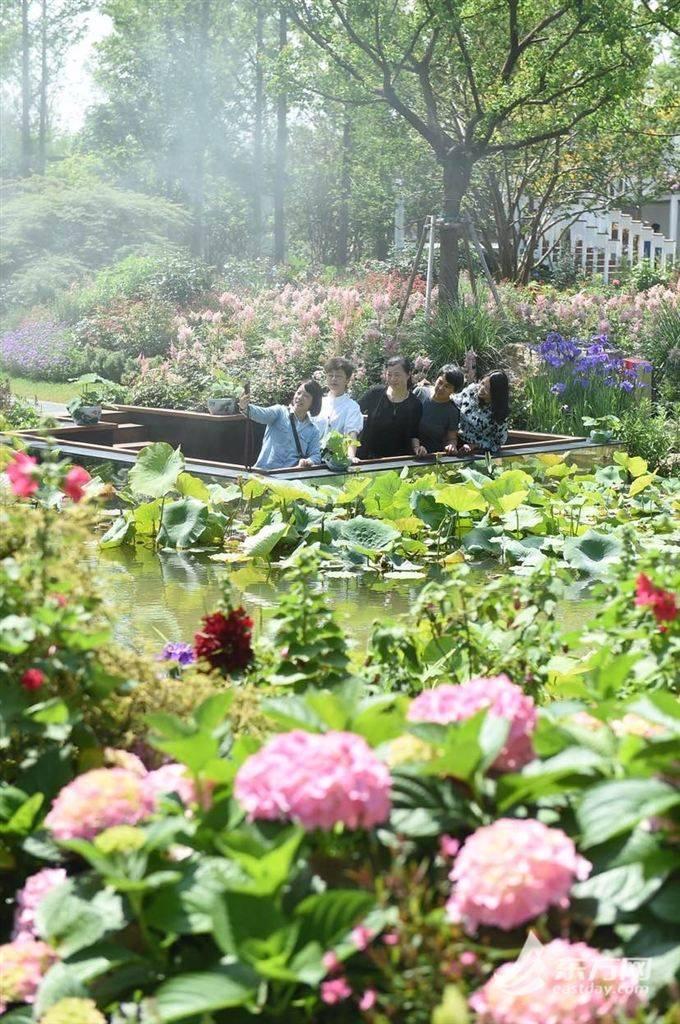 满满的新鲜感!花博会各展园展馆开启第一次集中换花