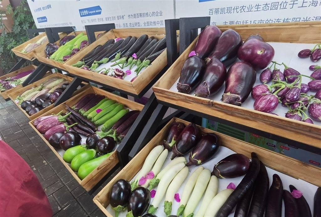 沪上农业科研成果新突破  两茄子新品种今日完成成果转化签约