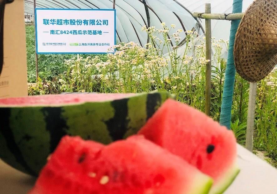 第二届夜生活节|  夏日宠儿夜食美味    湖北潜江小龙虾来了
