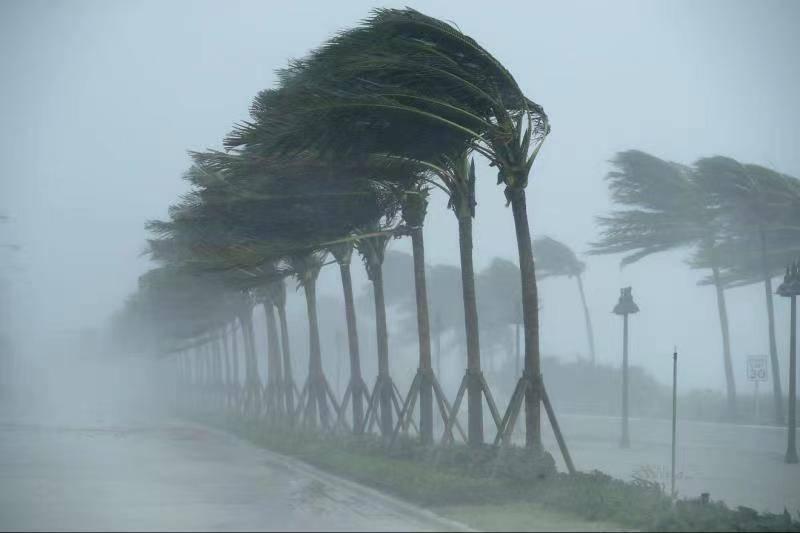 美国国家海洋和大气管理局:2021年飓风季活跃程度可能高于平...