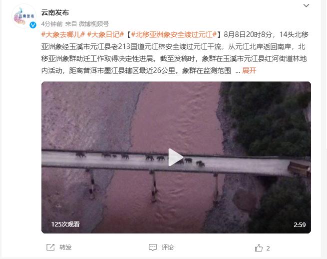 14头北移亚洲象安全渡过元江,北移亚洲象群助迁工作取得决定性...