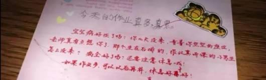 时代楷模   给孩子最好的教育是什么?上海这位小学教师27年...