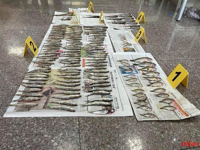 攀枝花一男子凌晨在金沙江非法捕捞并暴力拒捕,已被刑拘