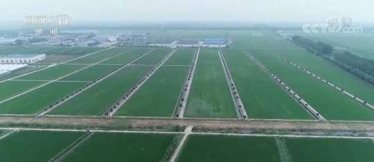 2030年我国累计建成12亿亩高标准农田