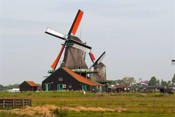 外媒揽要丨9月19日晚报:世界人均最高的荷兰人正在变矮