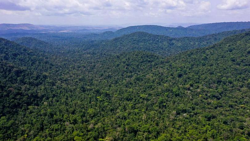 巴西亚马孙河中心综合保护区行动计划正式启动