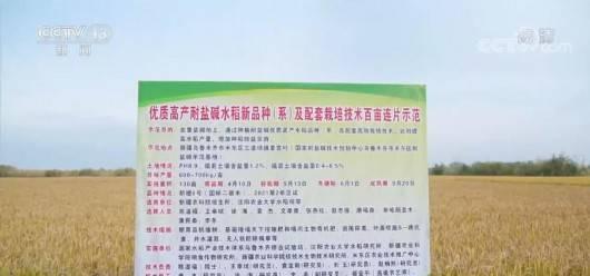 """""""京津冀艺联""""启动 搭建""""电影+""""新生态"""