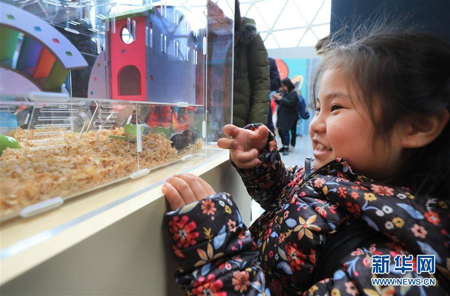 (社会)(2)鼠年生肖展在沪举行