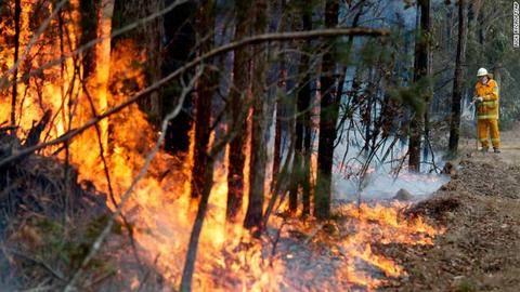 200108165239-01-australia-wildfires-0108-exlarge-169.jpg
