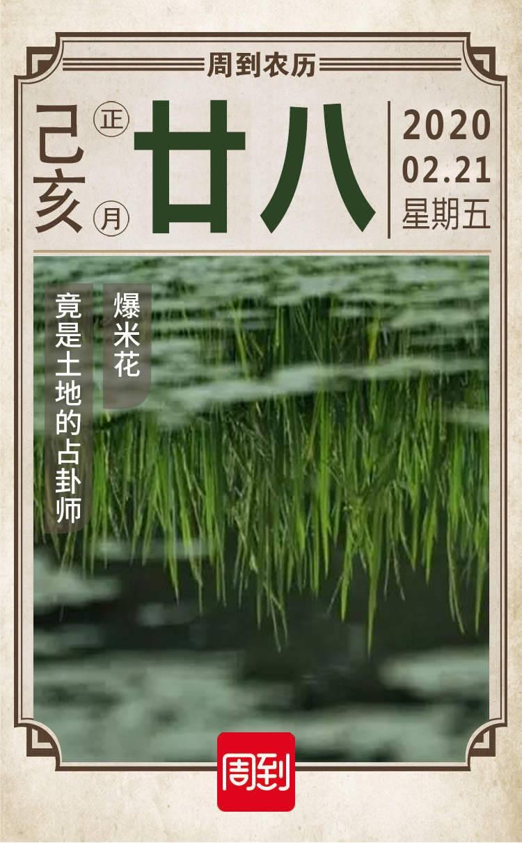 农历中国   正月廿八 · 雨水时节占稻色